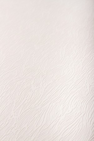 Graham And Brown Super Fresco Tree Bark White Textured